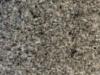 Dapple Grey Fine